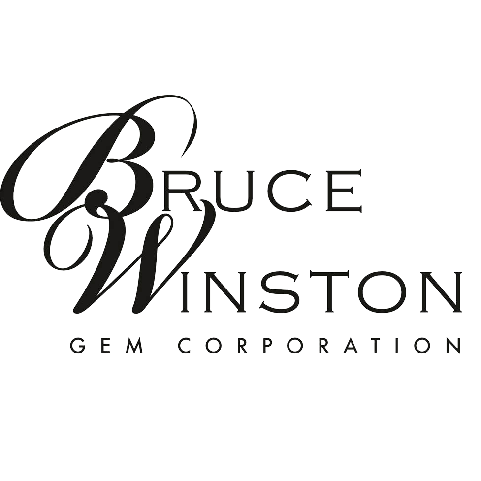 Bruce Winston Logo copy.png