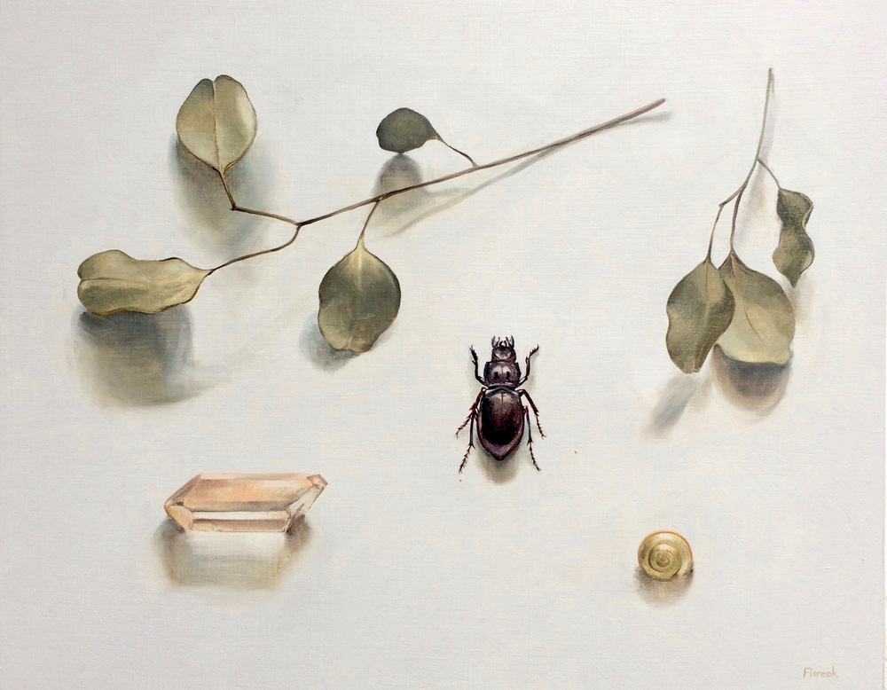 Eucalyptus and Beetle