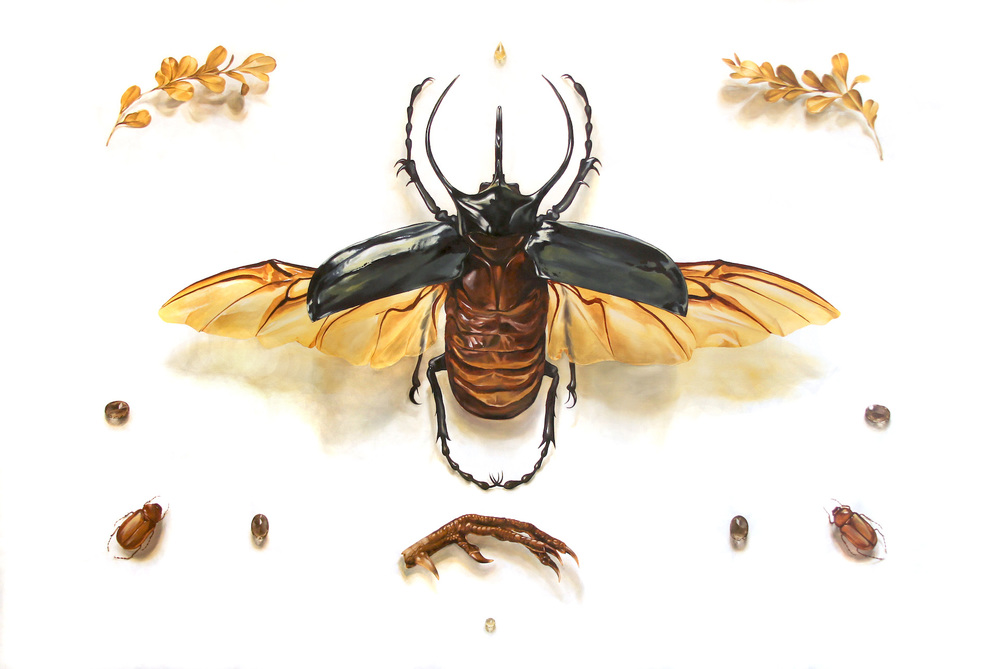 Veneration / Rhinoceros Beetle