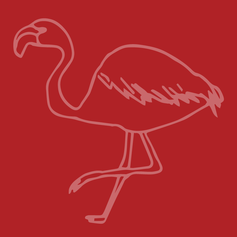 Flamingo6.png