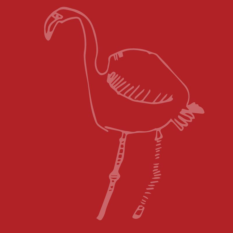 Flamingo12.png