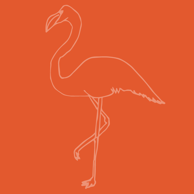 Flamingo13.png