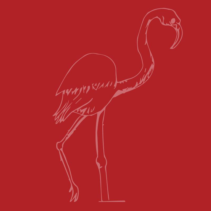 Flamingo18.png