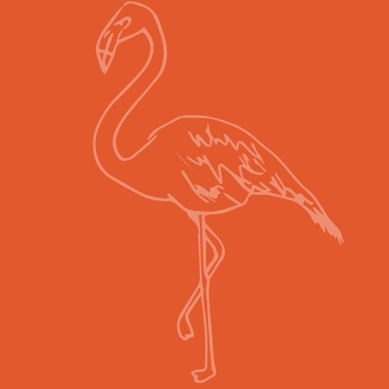 Flamingo19.png