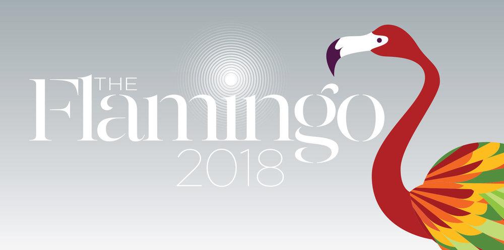 Aspen Education Foundation - FLAMINGO-2018-Opening-Image (1).jpg