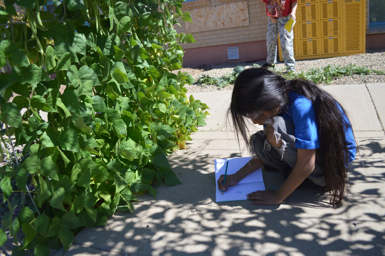 Kemper Elementary School — Montezuma School to Farm Project