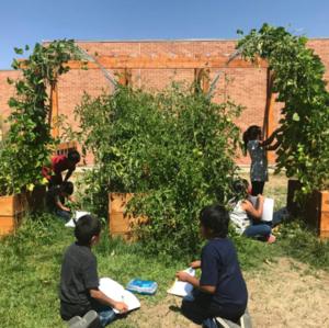 school garden classrooms