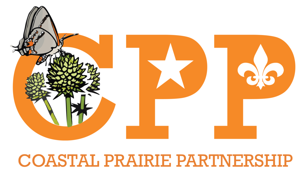 CPP Flat Orange Logo.png