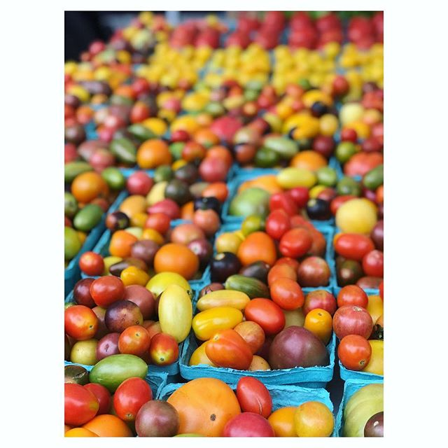Currently eating tomatoes for breakfast, lunch and dinner.  #heirloomtomatoes #cherrytomatoes #earlygirltomatoes #sungoldtomatoes #eatlocal #shopsmall