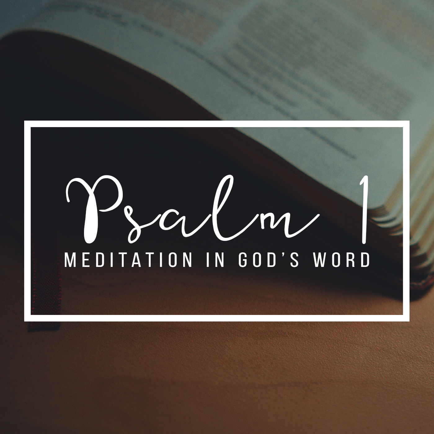 Psalm 1:  Meditation in God's Word