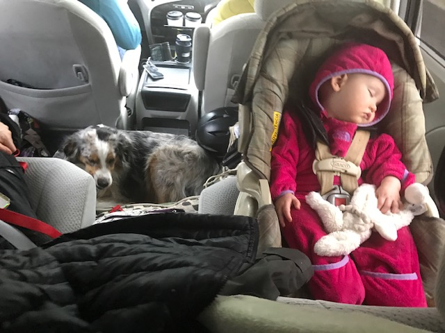 Quick, she's sleeping. Mom gets to climb up in the front seat and we can listen to a podcast!