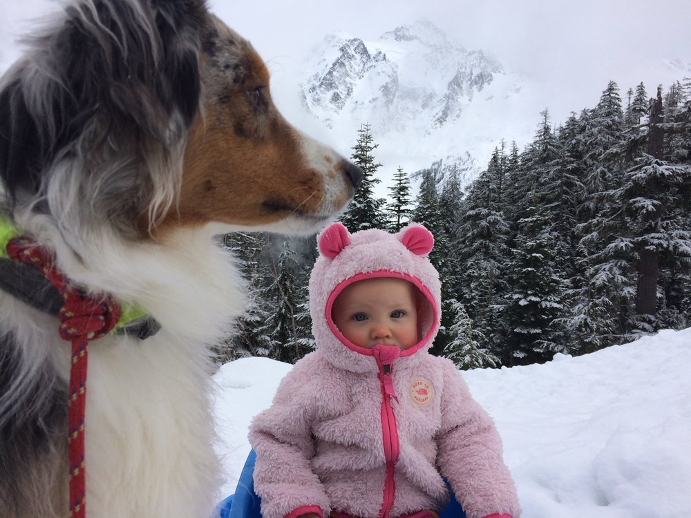 Don't worry, we had our best babysitter on the job while we went skiing! ;)