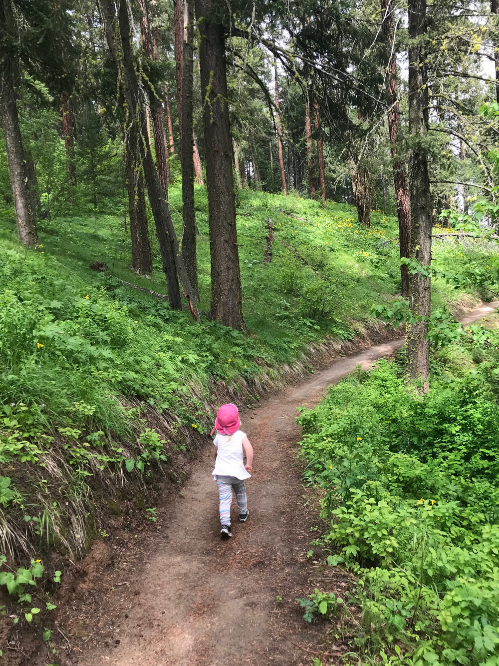 "The good news is that when I was pregnant and doing rehab it was a perfect time to take hikes with a two year old because we averaged approximately fifty feet every five minutes. ""I'm going to hike up to….oooooh what's that?"""