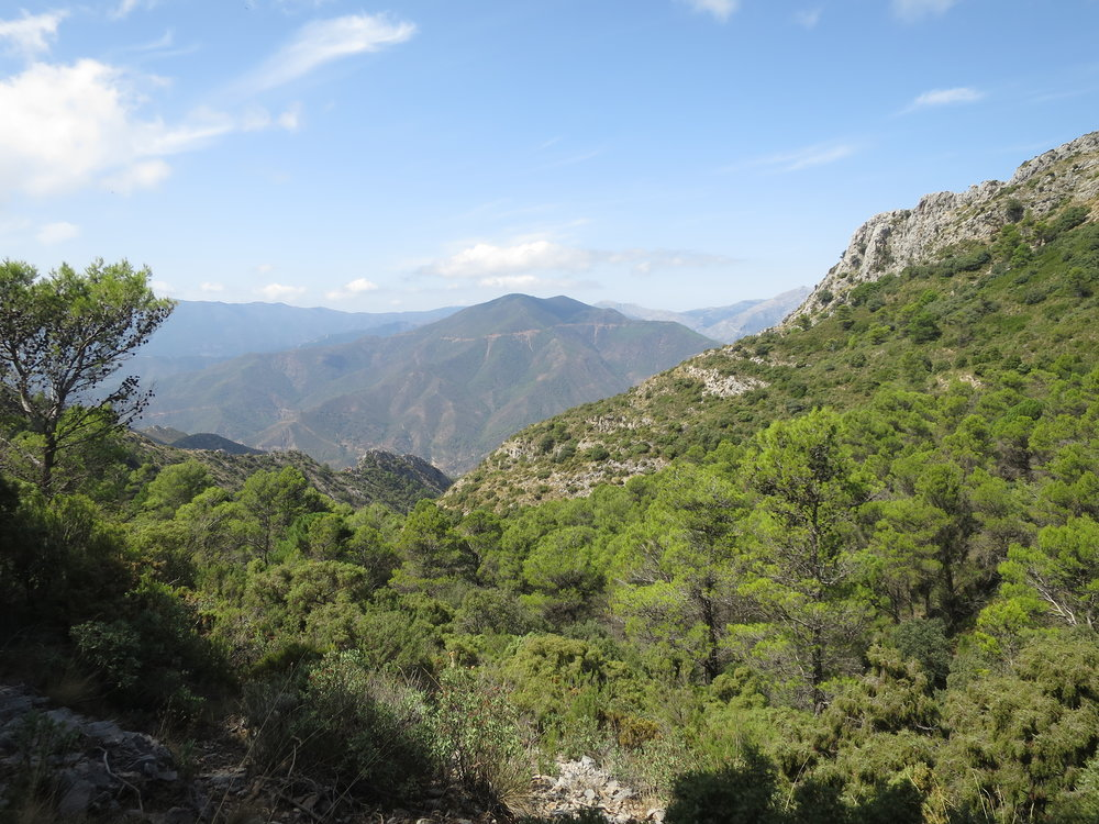 Yoga Retreat Spain 68.JPG