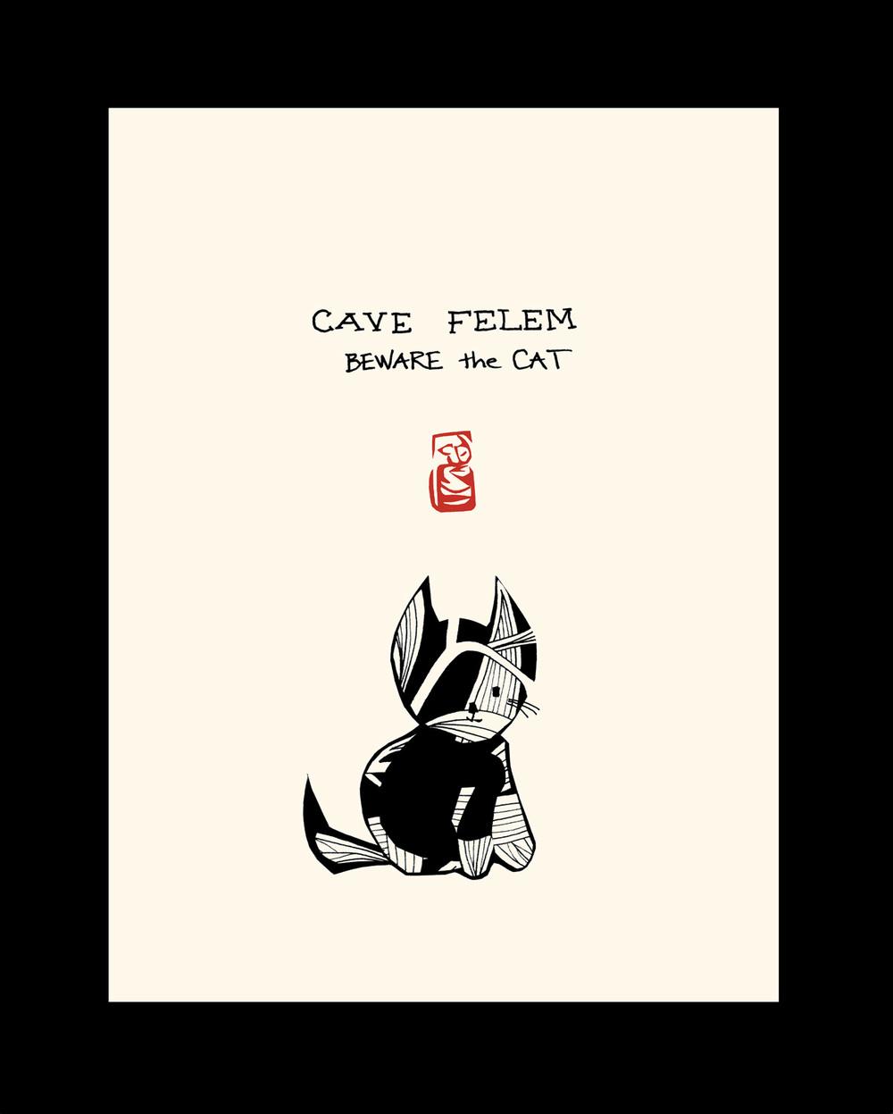 HCP18  CAVE FELEM