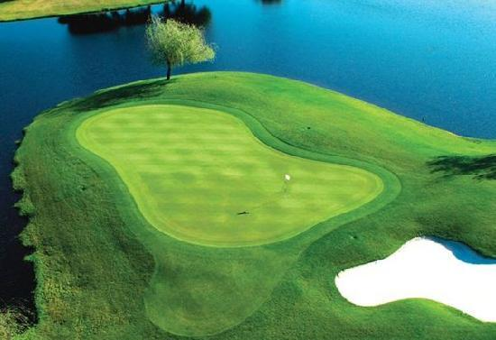 metrowest-golf-club.jpg