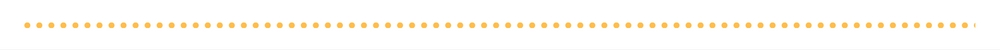 Yellow dotted line.jpg