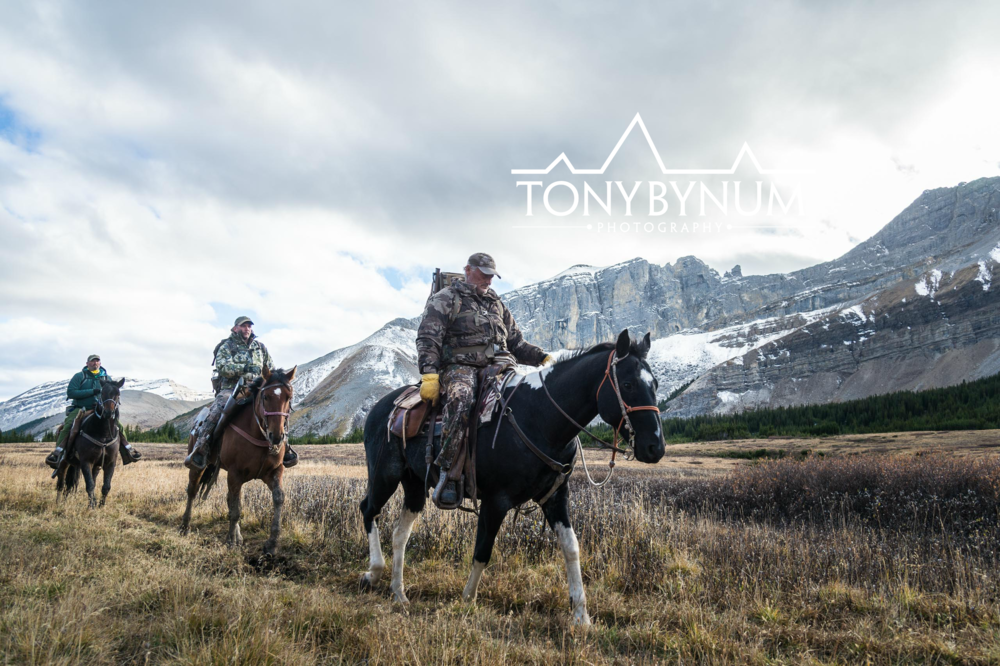 Three men horseback hunting in the rocky mountains. Hunting wild bighorn sheep. © Tony Bynum