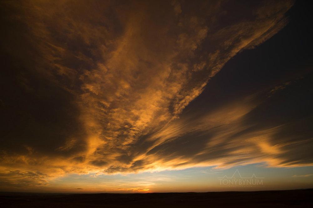 montana-sky-bynum-8219.jpg