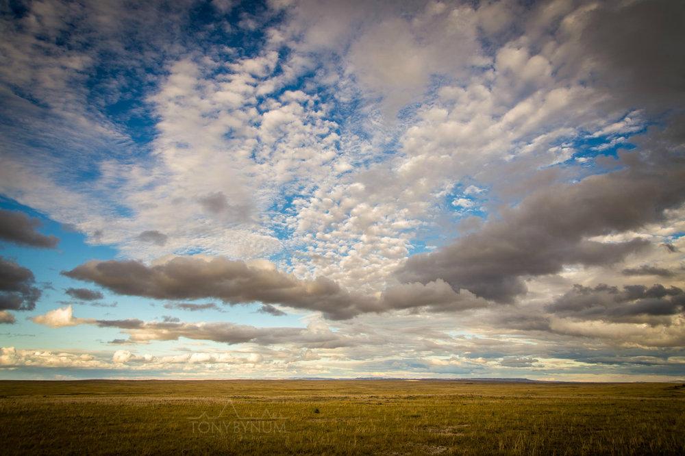montana-sky-bynum-8324.jpg