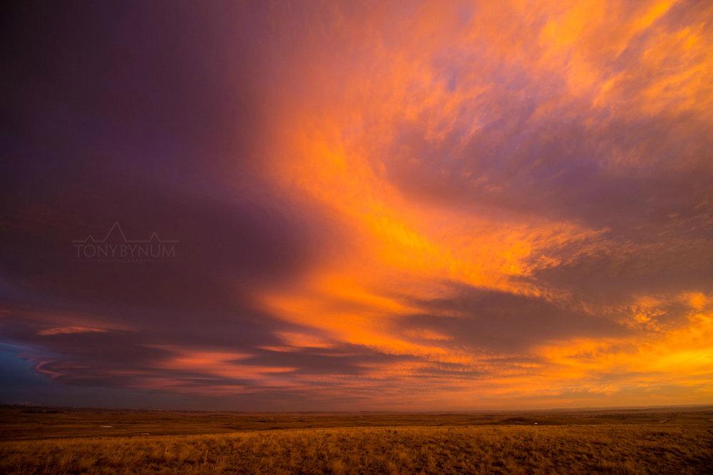 montana-sky-bynum-8193.jpg
