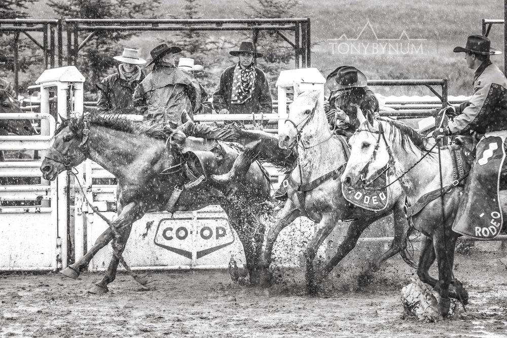 cowboys_bynum-3848.jpg