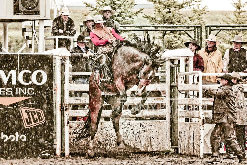 cowboys_bynum-3713.jpg