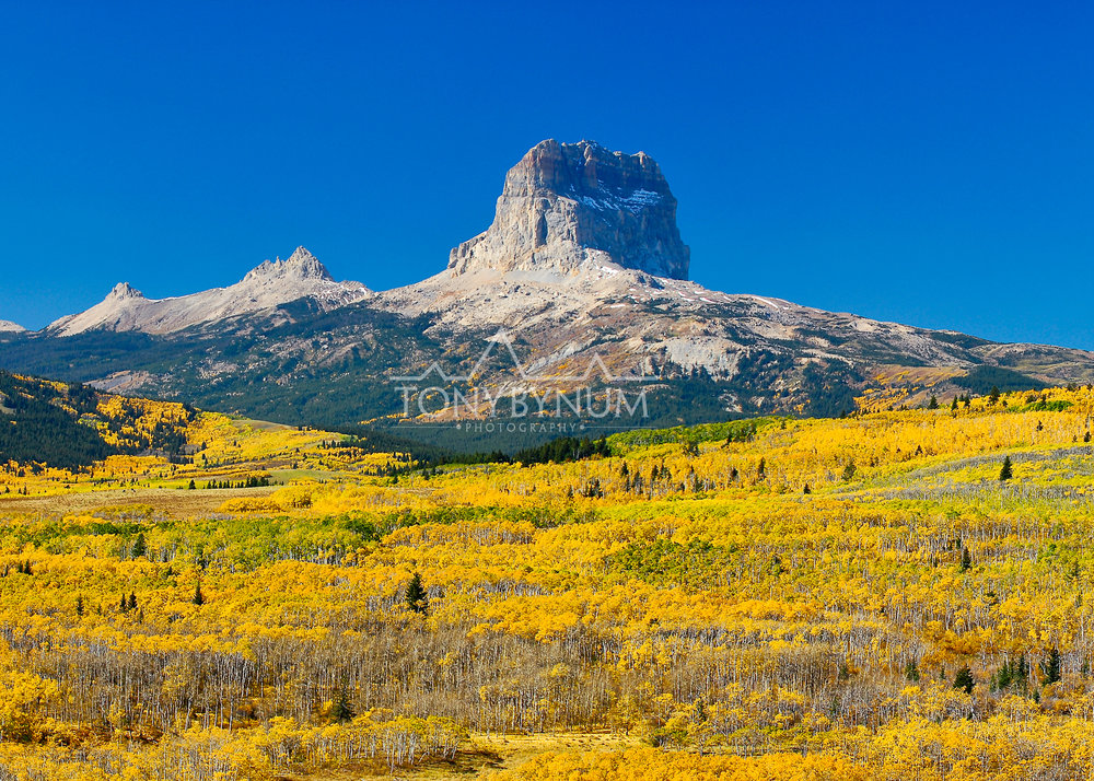 chief-mountain-fall-glacier-park-2-.jpg