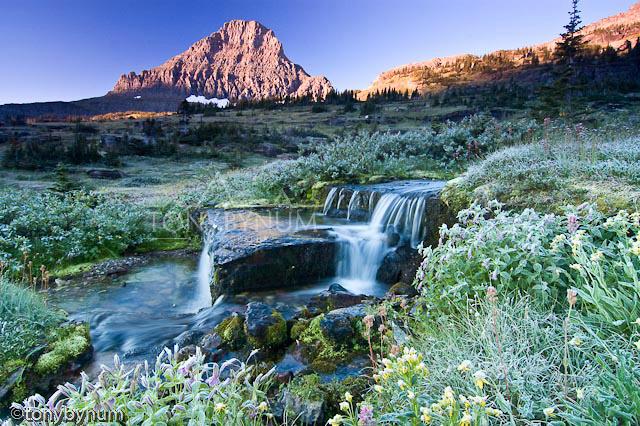 glacier national park tonybynum-10-.jpg