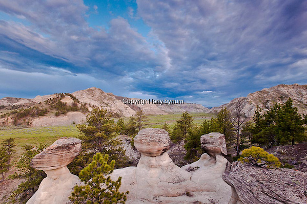 missouri river breaks, bull wacker canyon. Badlands and big sky's. Montana Photographs (tony bynum/tonybynum.com)