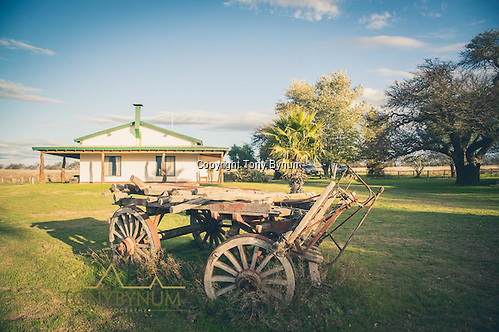An old wagon resting in the yard in front of the hunting lodge on the Los Molles Ranch. La Pampa, Argentina ©tonybynum.com