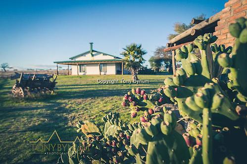 The hunting lodge at Los Molles, Ranch. La Pampa, Argentina ©tonybynum.com