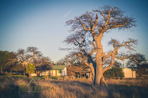 Hunters quarters on the Los Molles, Ranch. La Pampa, Argentina ©tonybynum.com