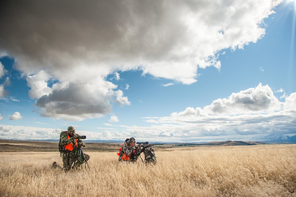 Hunting deer in Montana with Hawke Optics. © Tony Bynum