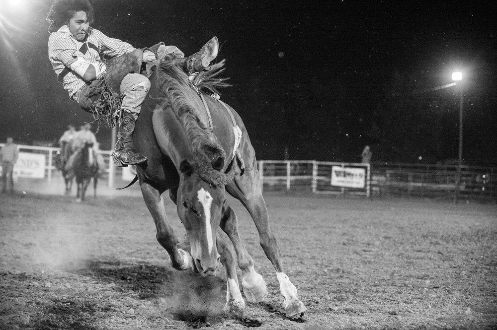 Bareback Rider © Tony Bynum