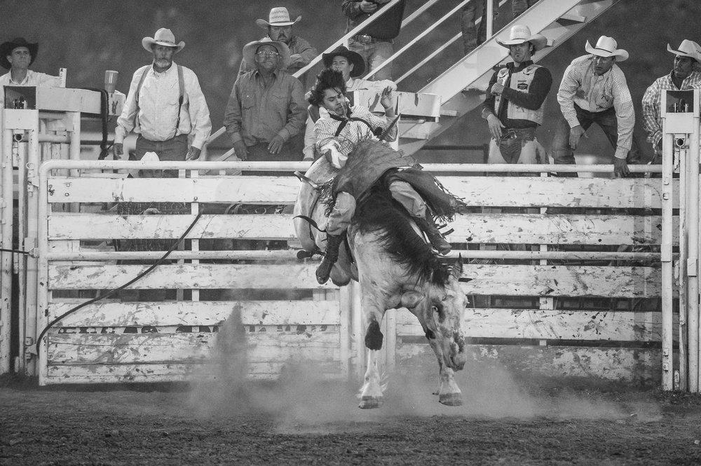 Bareback rider. © Tony Bynum