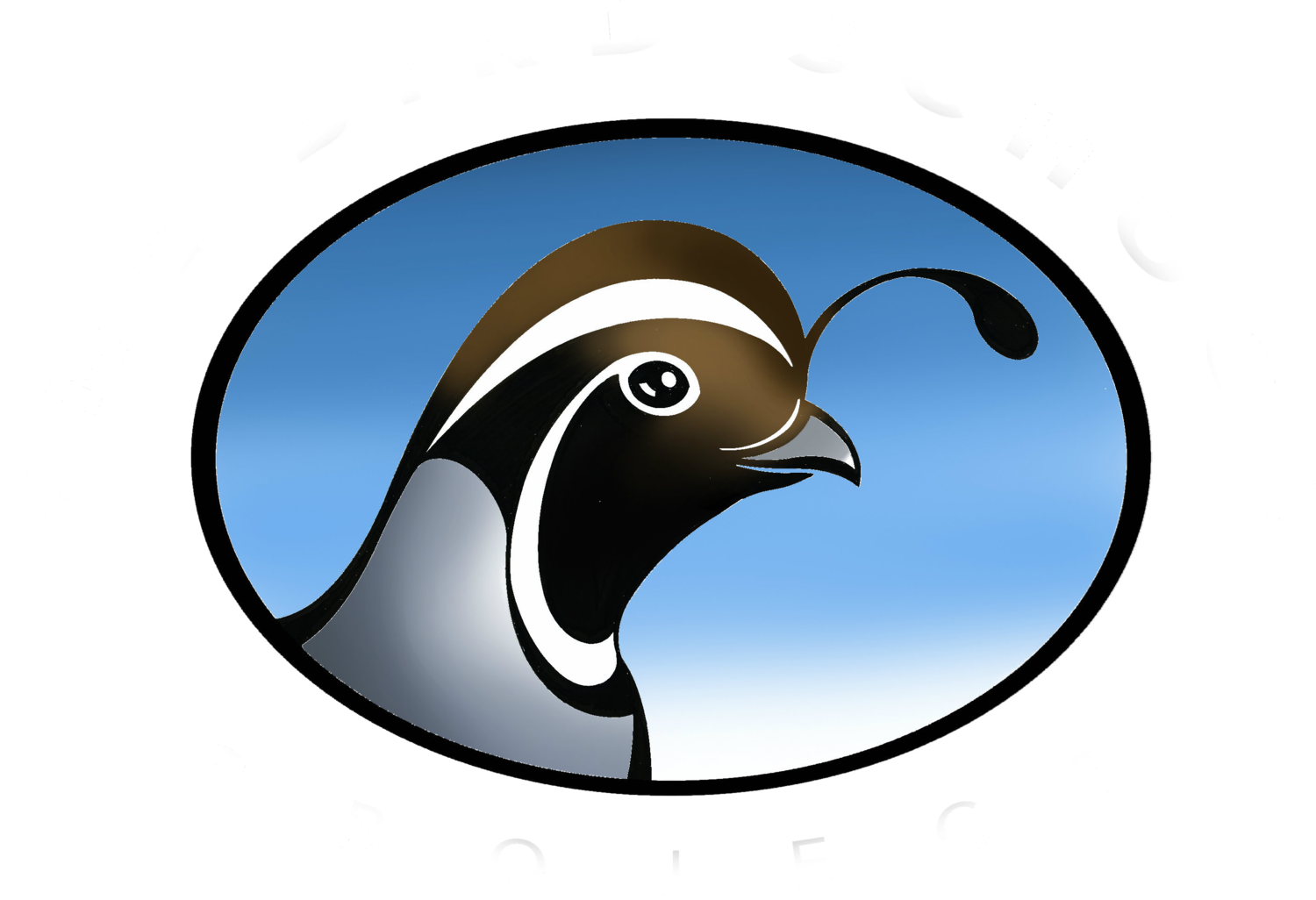 The Bird School Project