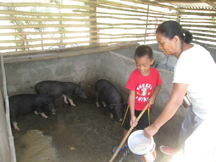"David takes great pride in his grandma's achievements and helps her whenever he can.  He now has his own piglet ""Oinky"" who is part of Adopt-a-School's community livestock program. -"