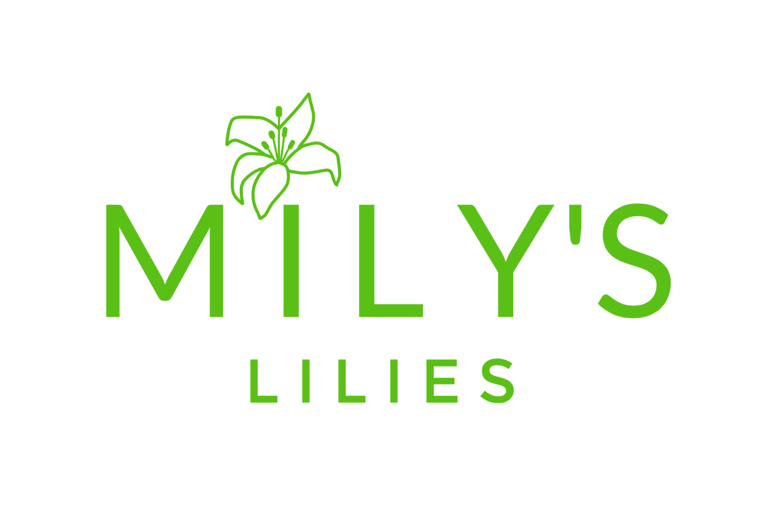 MILY'S LILIES
