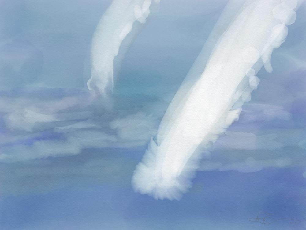 H.Whale #4