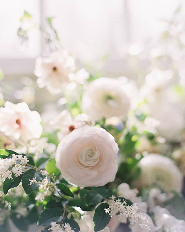 Dreamy flower work by @kellylenard  Photographer: @kurtboomerphoto  Creative direction: @eastmadeeventco Florals: @kellylenard Hair & Makeup: @emily.artistry Calligraphy:@ciarraclaire  Rentals: @smthingvintage Linen: @bbjlinen Cake & Cookies: @fleur.and.flour  Gowns: @clairepettibone Hairpieces/veils: @ericaelizabethprettythings  Shoes: @bellabelleshoes  Rings: @susiesaltzman  Venue: @salubria_leta  Models: @hellyofficial @seeeersha @modelogic Coming soon to: @magnoliarouge