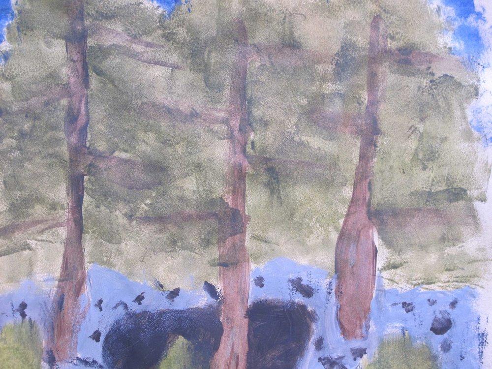 Forest textures - 1.jpg