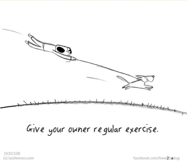 dibujos-que-significa-ser-perro 9.jpg