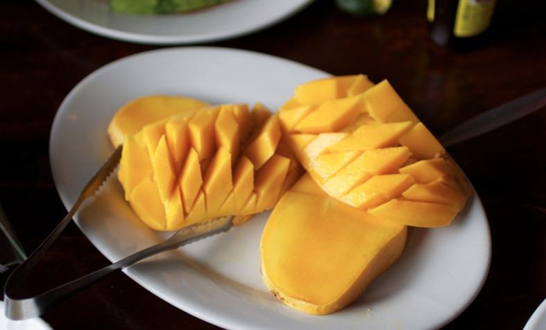 Resultado de imagen para perritos comiendo mangos