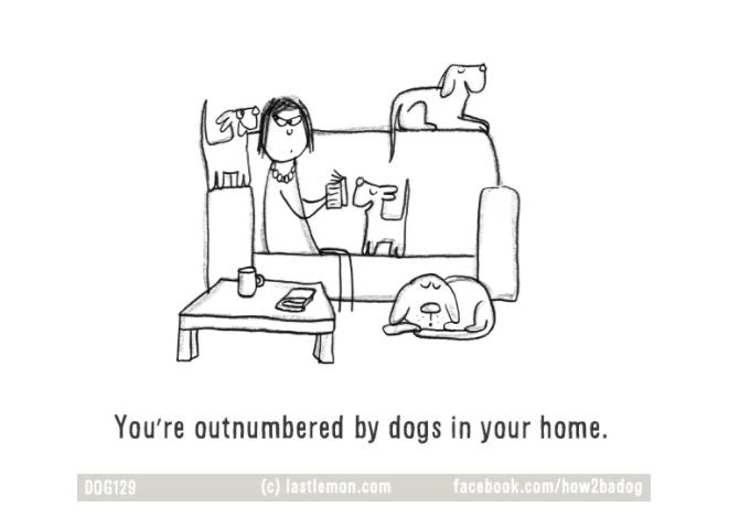 ilustraciones-loco-por-tu-perro-crazy-dog-parent 6.jpg