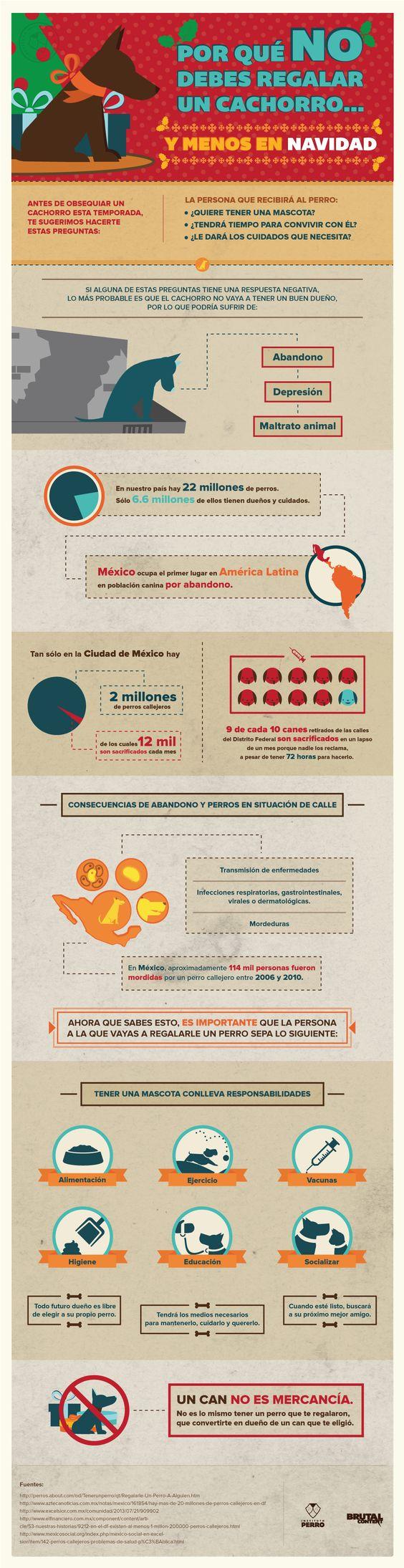infografia navidad.jpg