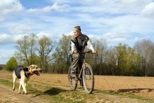 perro sin correa bici.jpg