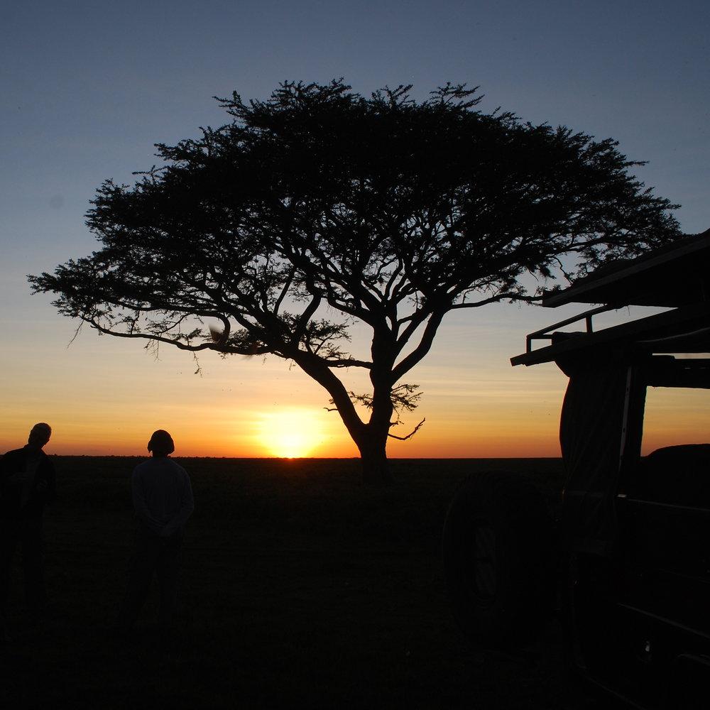 Africa 646.JPG