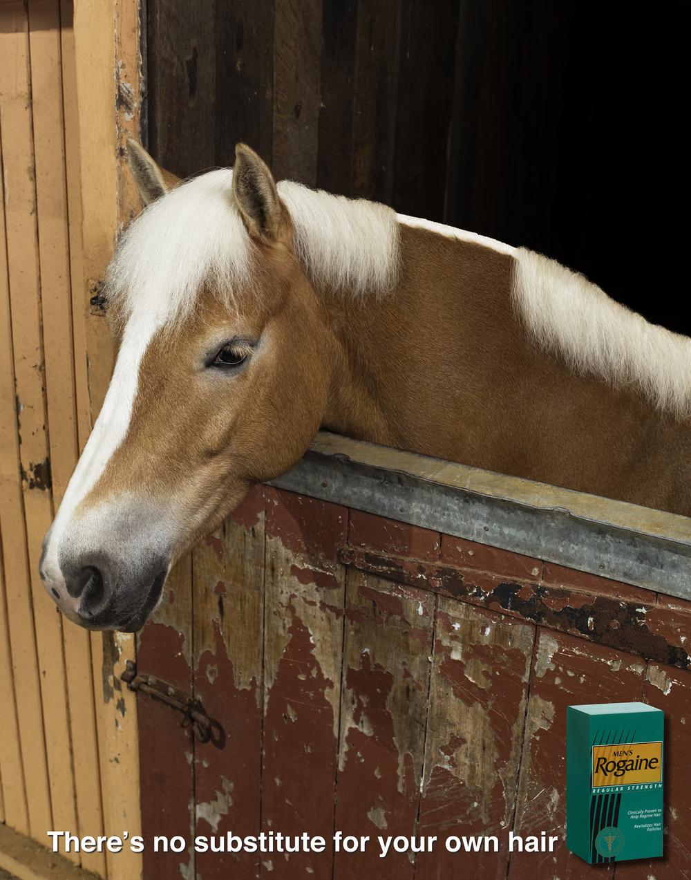 7 rogane-horse.jpg