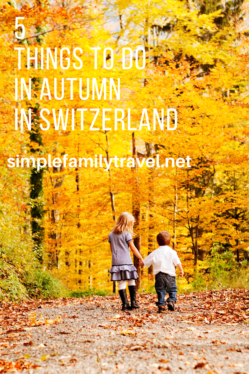 top 5 things to do with kids in autumn in switzerland